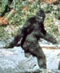 Patterson Bigfoot