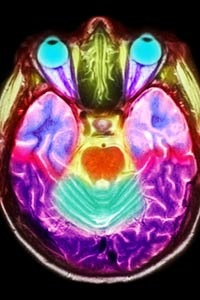 brain-art-color.jpg
